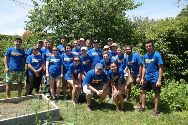 Interns participate in their very own Day of Service, planting apple trees in a community garden.