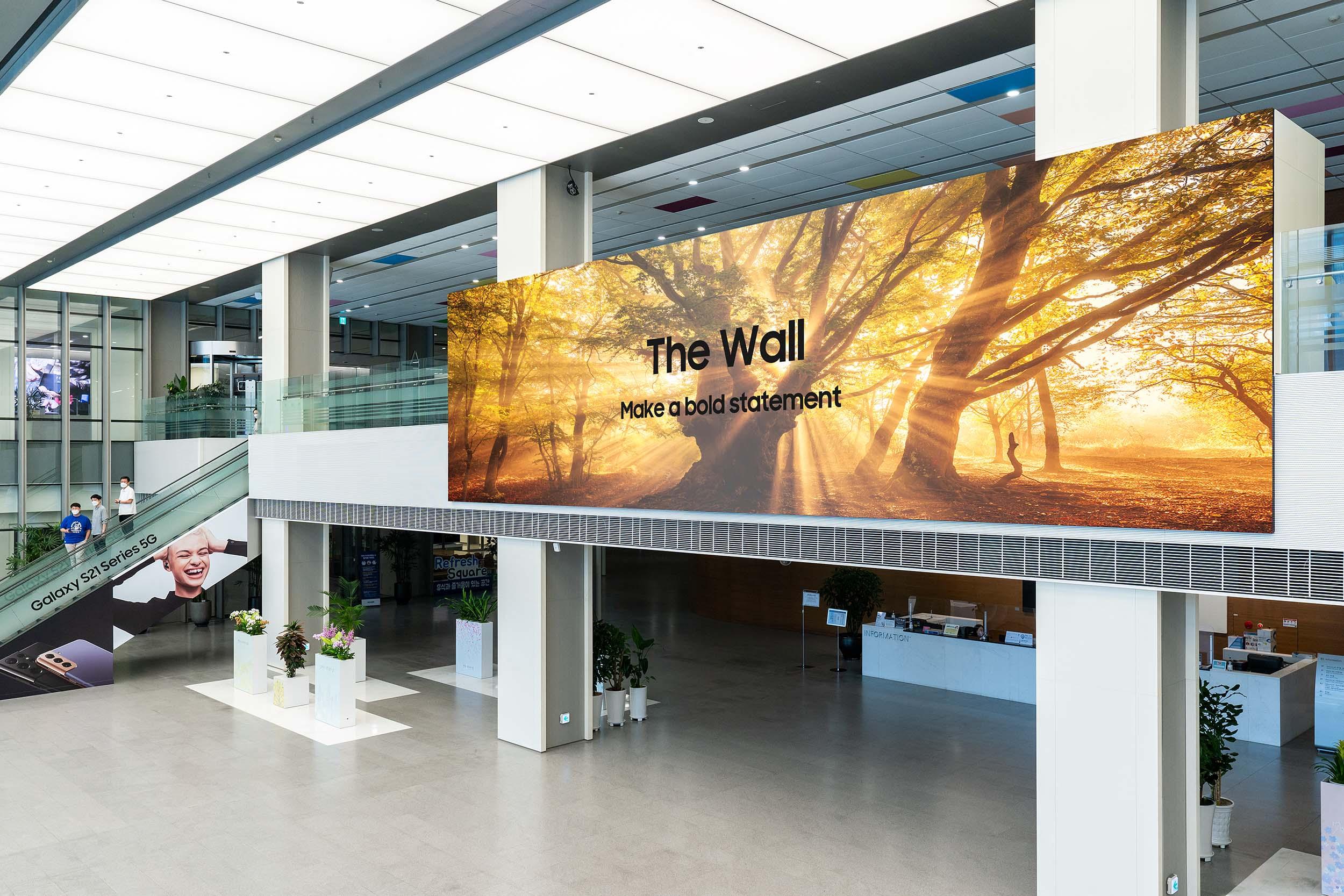 The Wall (IWA Series)